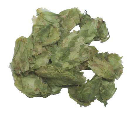 Whole El Dorado® Hops 10 Pounds