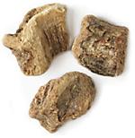 2 Oz. Sarsaparilla Root